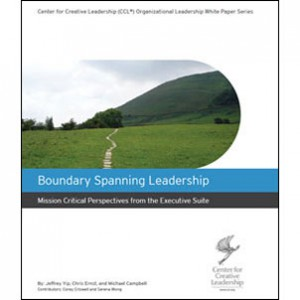 boundary-spanning-whitepaper